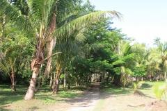 Phuket-Islands-bond-Paradise-island-Thailand-00042