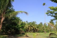 Phuket-Islands-bond-Paradise-island-Thailand-00044