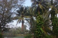 alamanda-laguna-phuket-hotel-0025