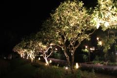 alamanda-laguna-phuket-hotel-20003