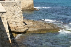 Heraklion-Greece-Crete-dostoprimechatelnosti-foto-01-0012