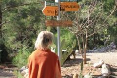 пойти налево, аль направо?