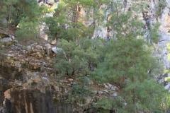 Goynuk-Canyon-2018-00024
