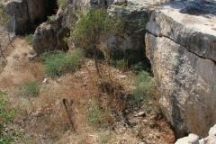 Pafos-Cyprus-dostoprimechatelnosti-foto-01-0003