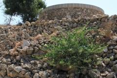 Pafos-Cyprus-dostoprimechatelnosti-foto-01-0008
