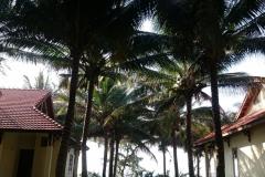 hotel-Golden-Coast-Resort-Spa-foto-00020
