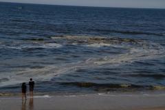 hotel-Golden-Coast-Resort-Spa-foto-beach-00010